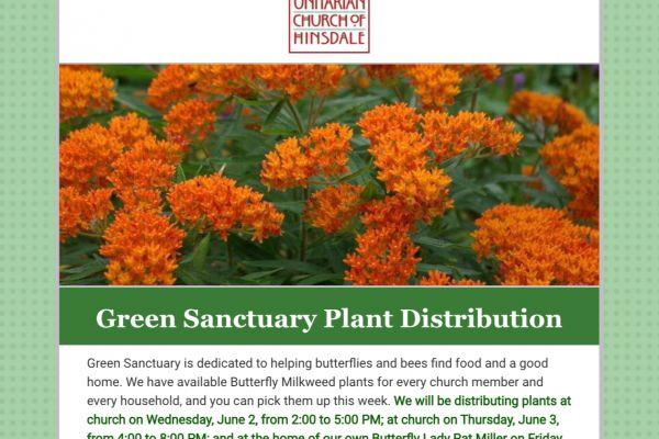 screencapture-myemail-constantcontact-green-sanctuary-plant-distribution-html-2021-09-16-02-02-59-edit0D54E9D2-27BA-48AE-039B-8A944663B4A9.jpeg
